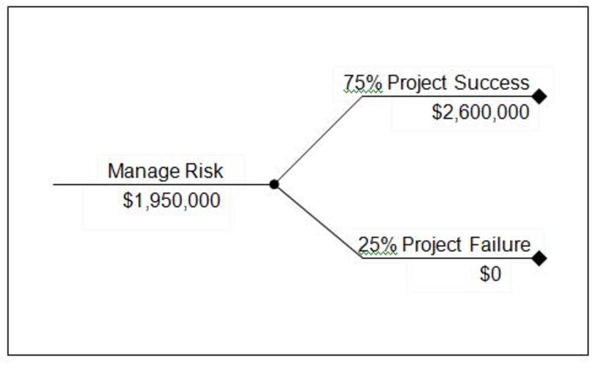 Figure 1: Risk Management Decision Tree