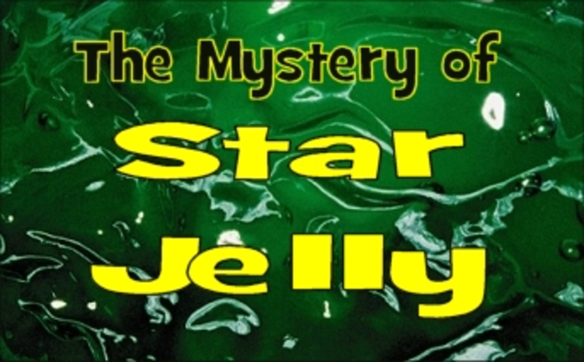 Star jelly or Star slime - What is it?: Mystery files