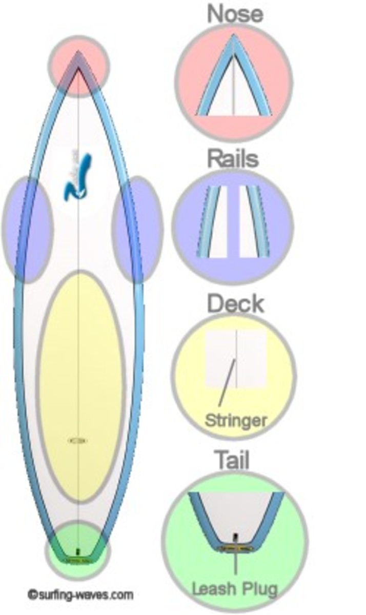 Colorful Diagram of Surf Board Parts