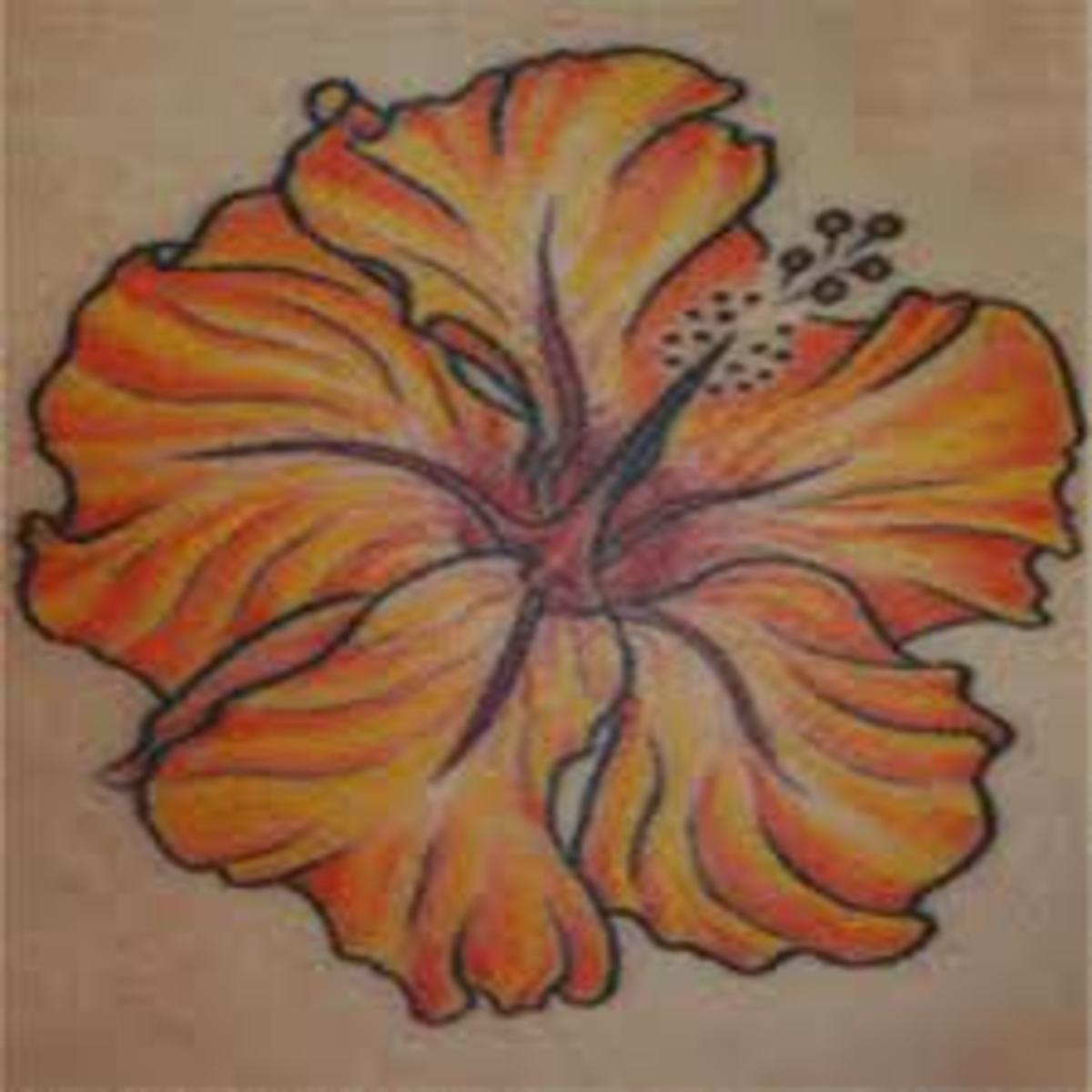 Pacific island tattoos moko style and hawaiian tattoos for Hawaiian flower tattoos meaning