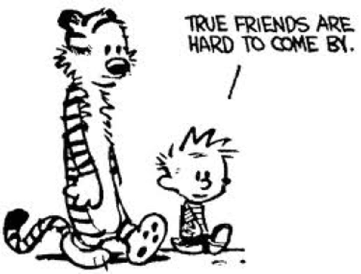 From 'Calvin and Hobbes' by Bill Watterson - Universal Press Syndicate
