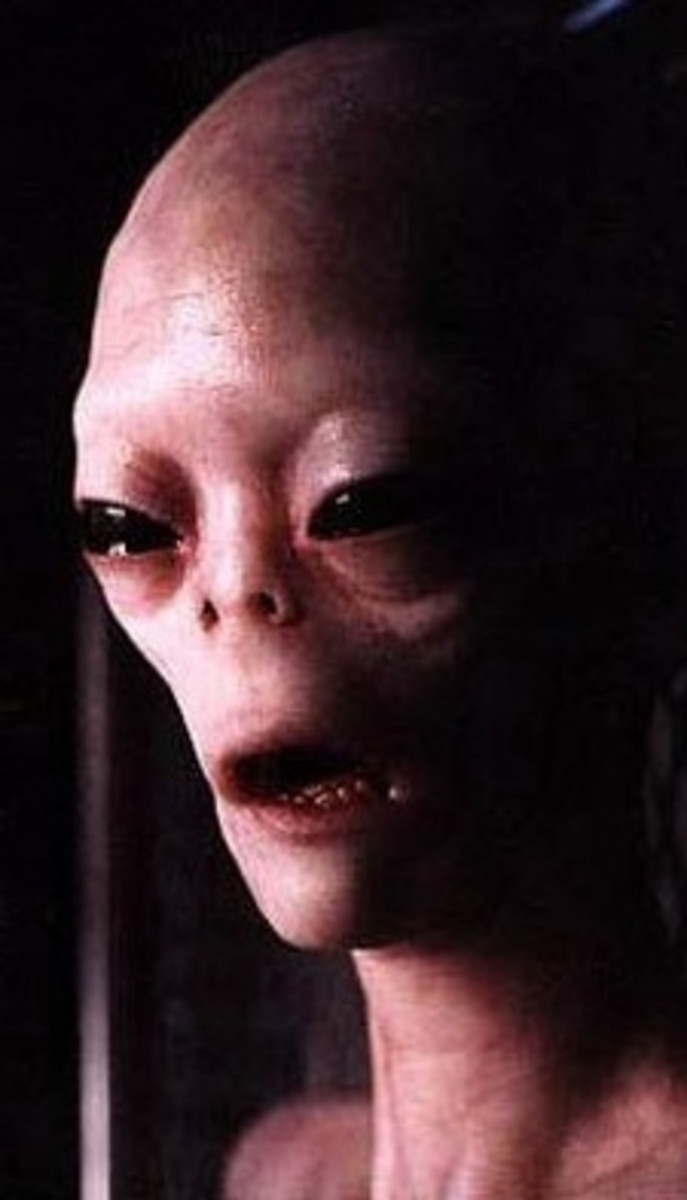 White House Denies Extraterrestrial Existence