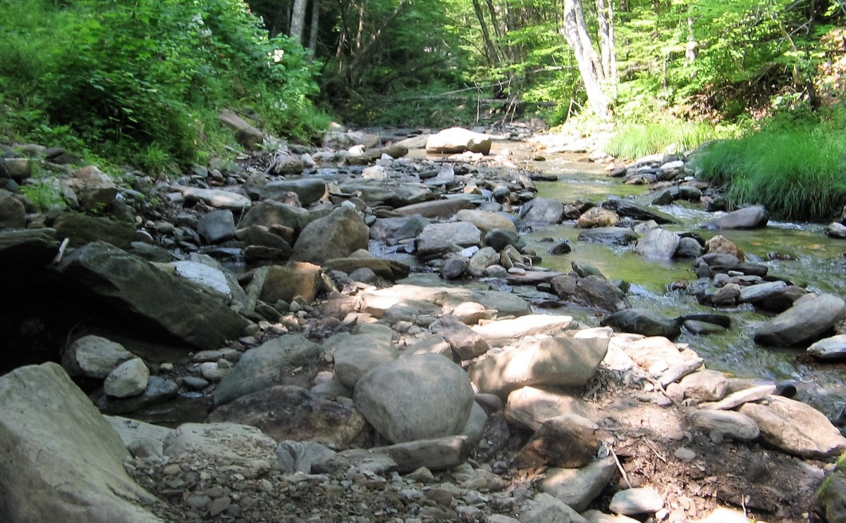 Vermont brook where you can pan for gold.