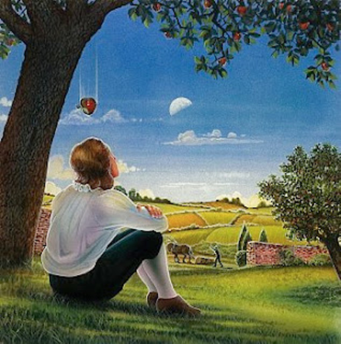 Isaac Newton was resting under a tree when an apple fell on his head. This led hime to discover the law of gravity.
