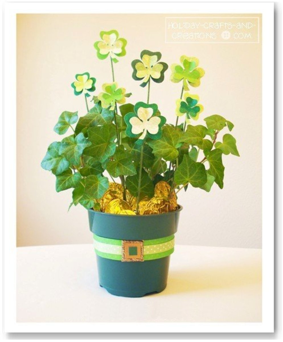 St. Patrick's Day House Plant