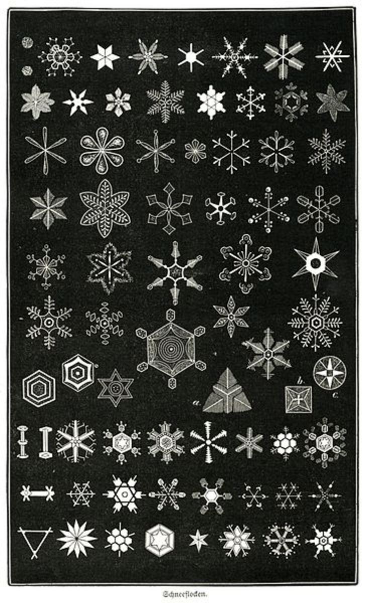 Types of Snowflakes