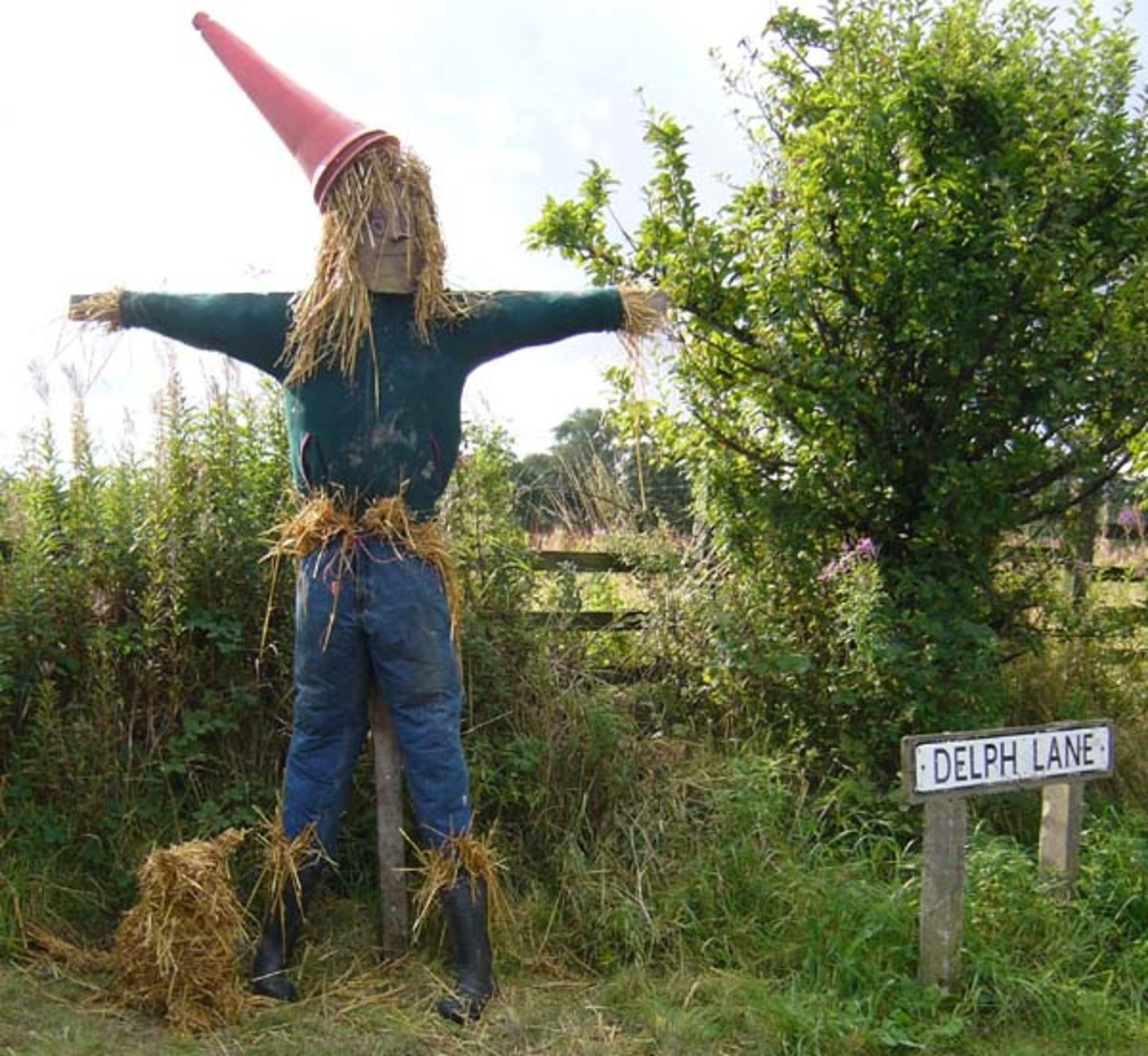 Cool Scarecrows