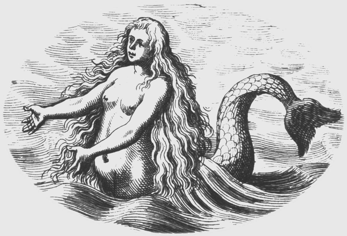 mermaidsaquaticape