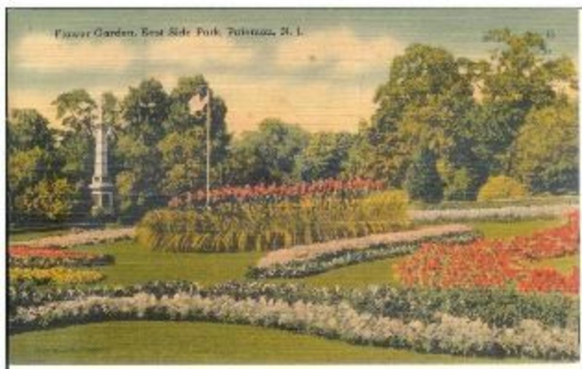 Flower Garden, East Side Park, Paterson, N.J. Published by Tichnor Brother.