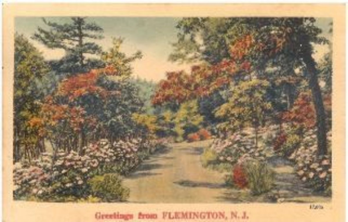 "Greetings from Flemington, N.J. Published by ""NYCE"" Quality Colored Landscape Locals"
