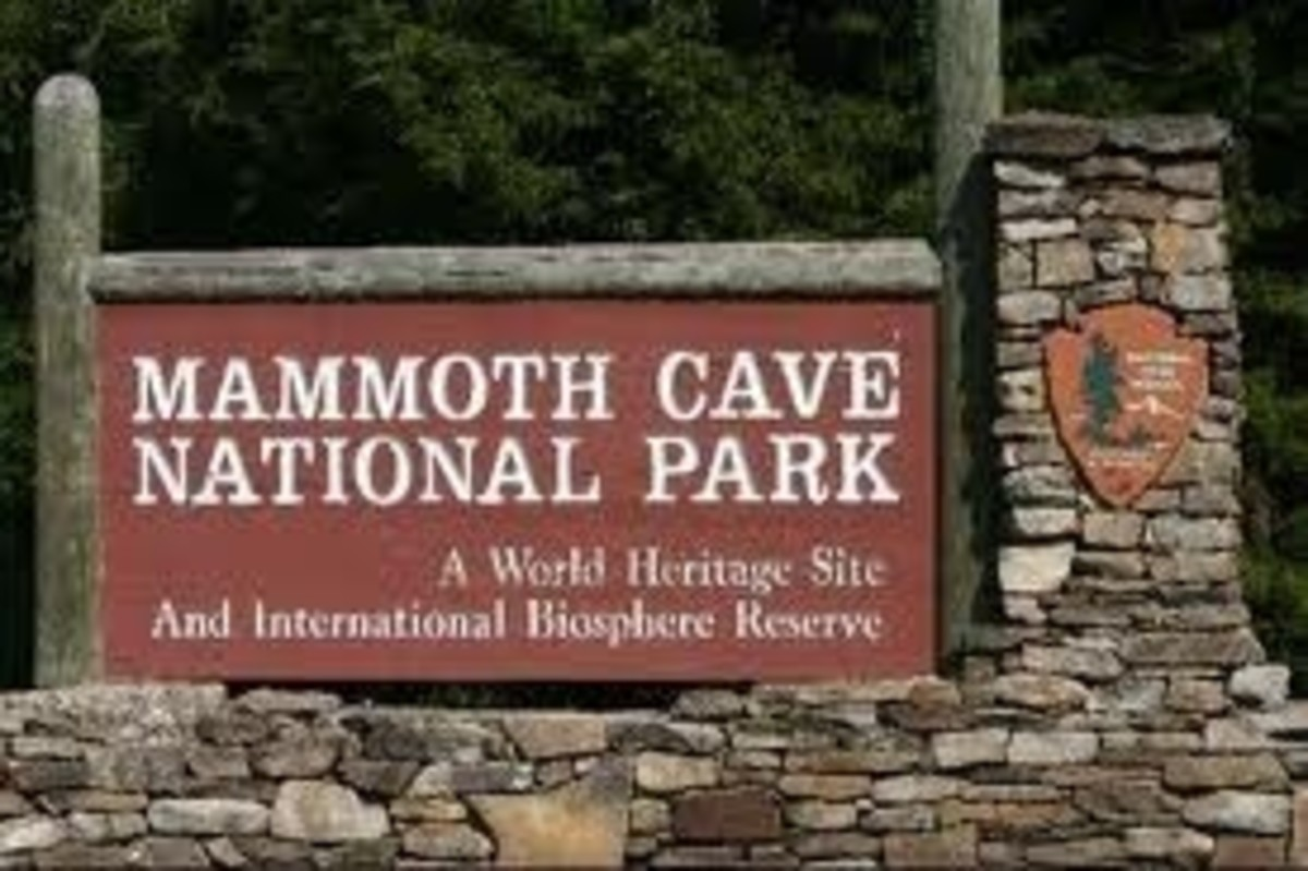 Mammoth Cave is the world's longest cave system with over 350 miles of known passages. Researches believe there are many passage yet undiscovered. The caverns are made of limestone which dissolved in water, then either washes away or drips to form st