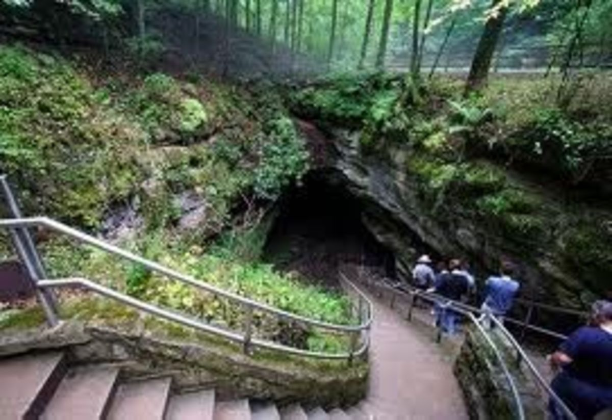 Main cave entrance. The temperature underground stays 54 degrees year-round. The humidity is ~87 percent. There are underground lakes and rivers.