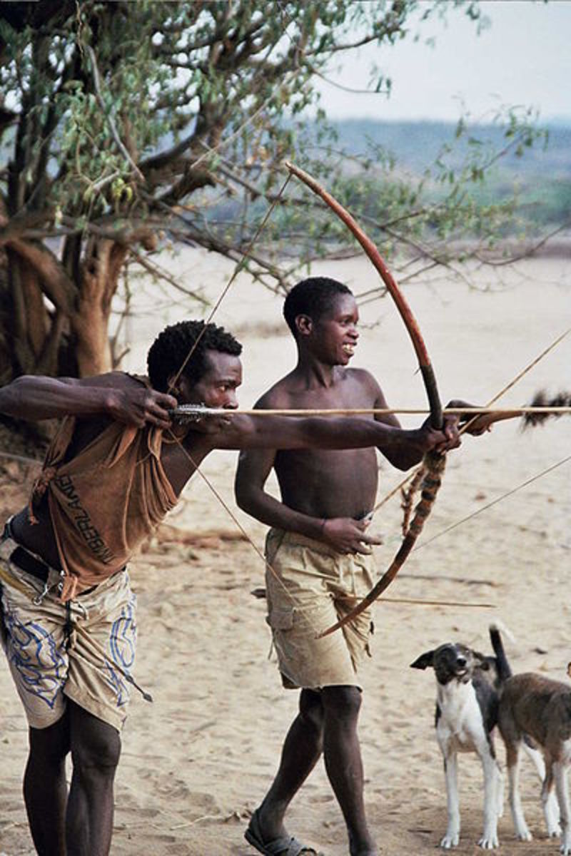 For the Hadza, the bow and arrow is absolutely vital to their survival. They use it to hunt everything from lizards to leopards.