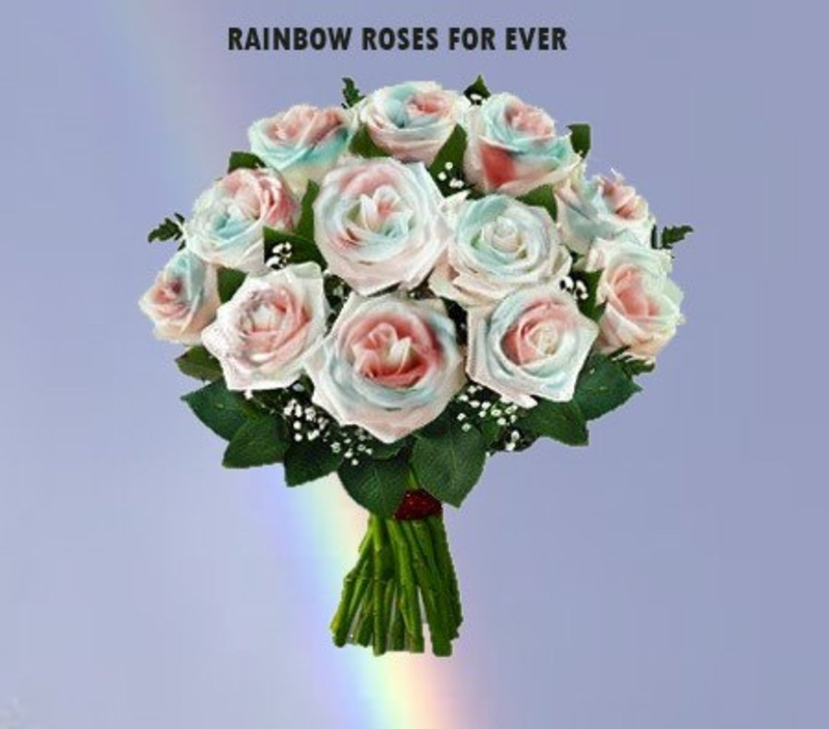 Rainbow Roses can bring smile...