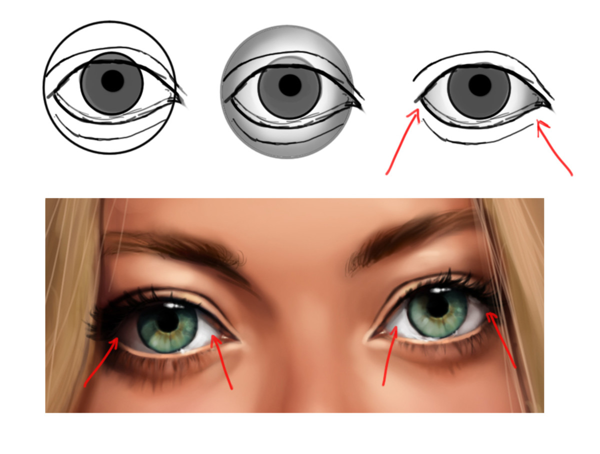 An illustration showing how the shape of the eyeball influences the shading of the sclera.