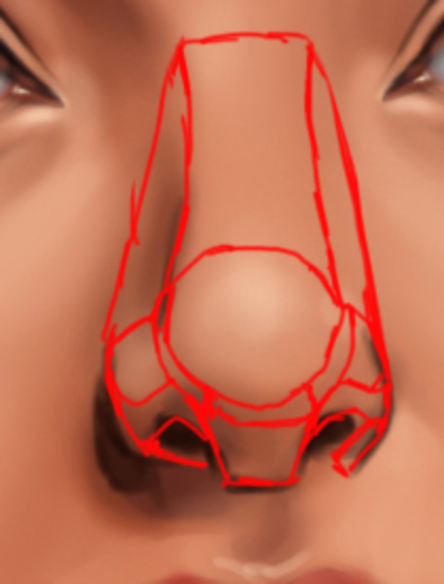 Another method that may be useful in helping you visualize the nose area is to think of it as a compilation of polygonal geometrical shapes