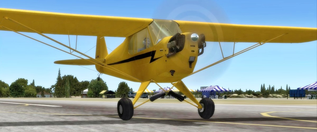 A2A Piper Cub, great for slow sightseeing!