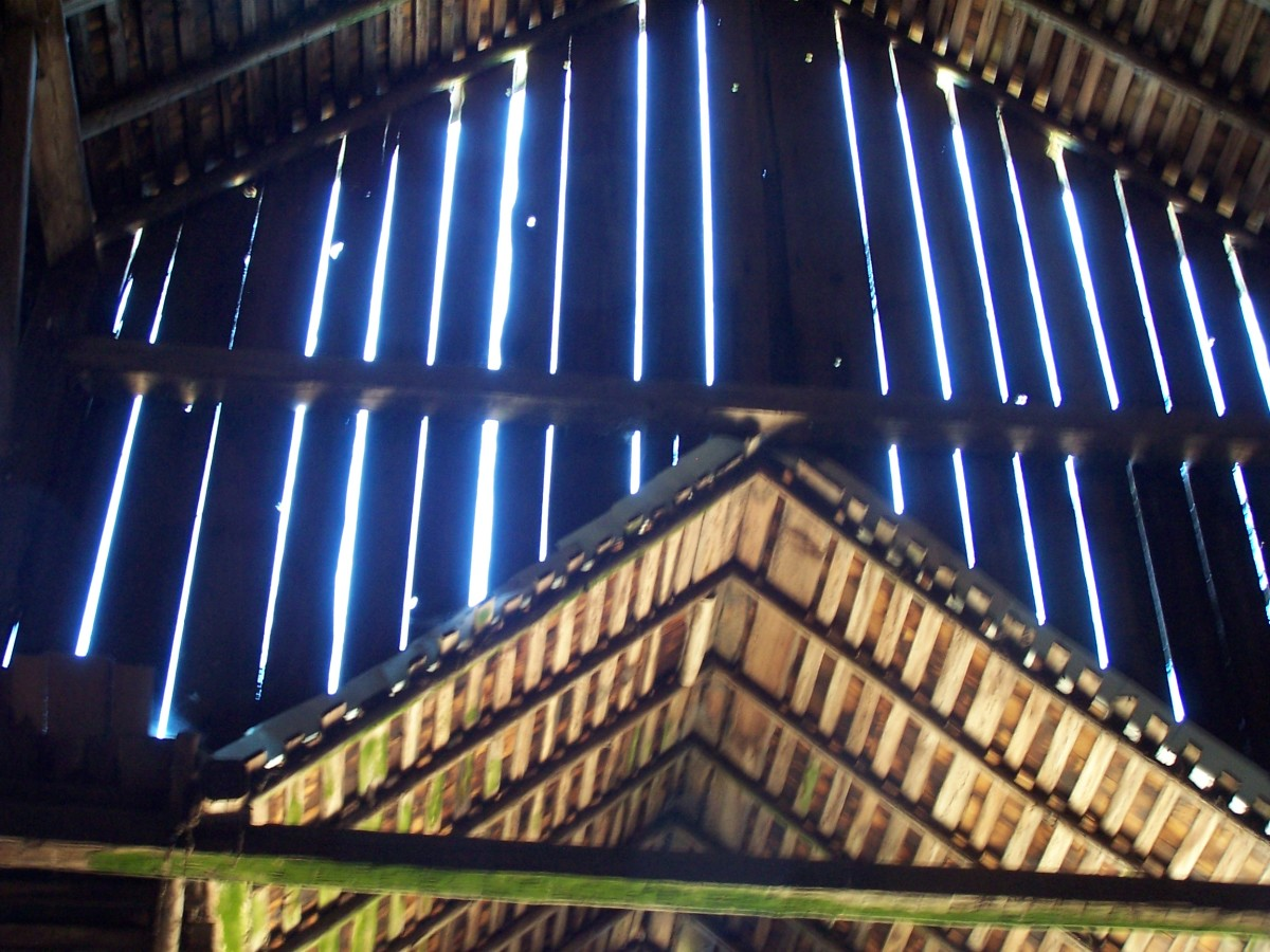 Inside the barn looking at the roof and construction