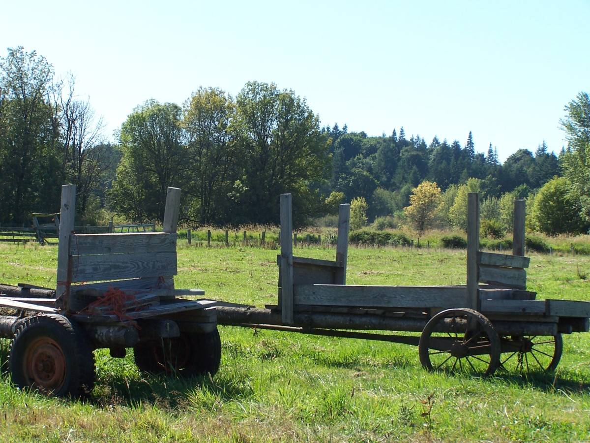 A glimpse at the old days. A history of farming.