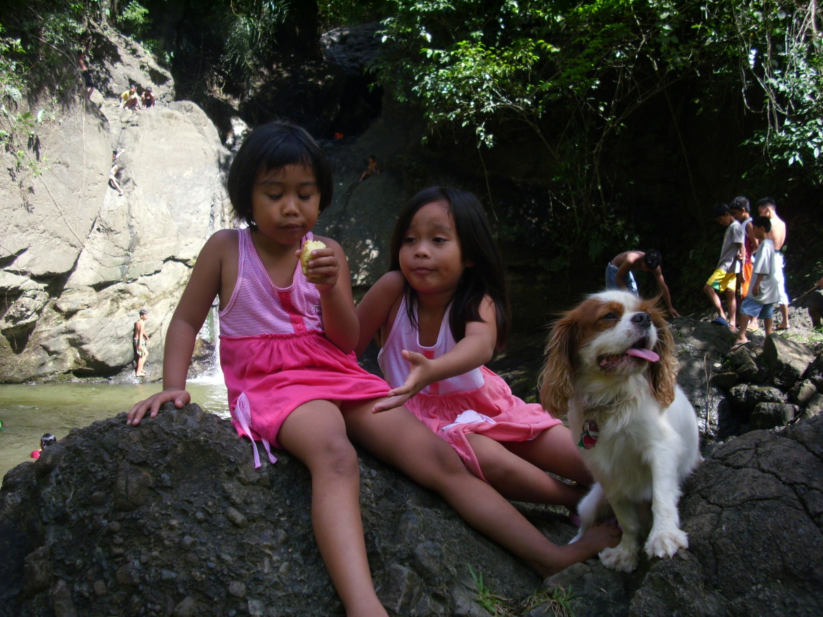 My nieces with Angus sitting on a huge rock  at Busay Waterfalls.