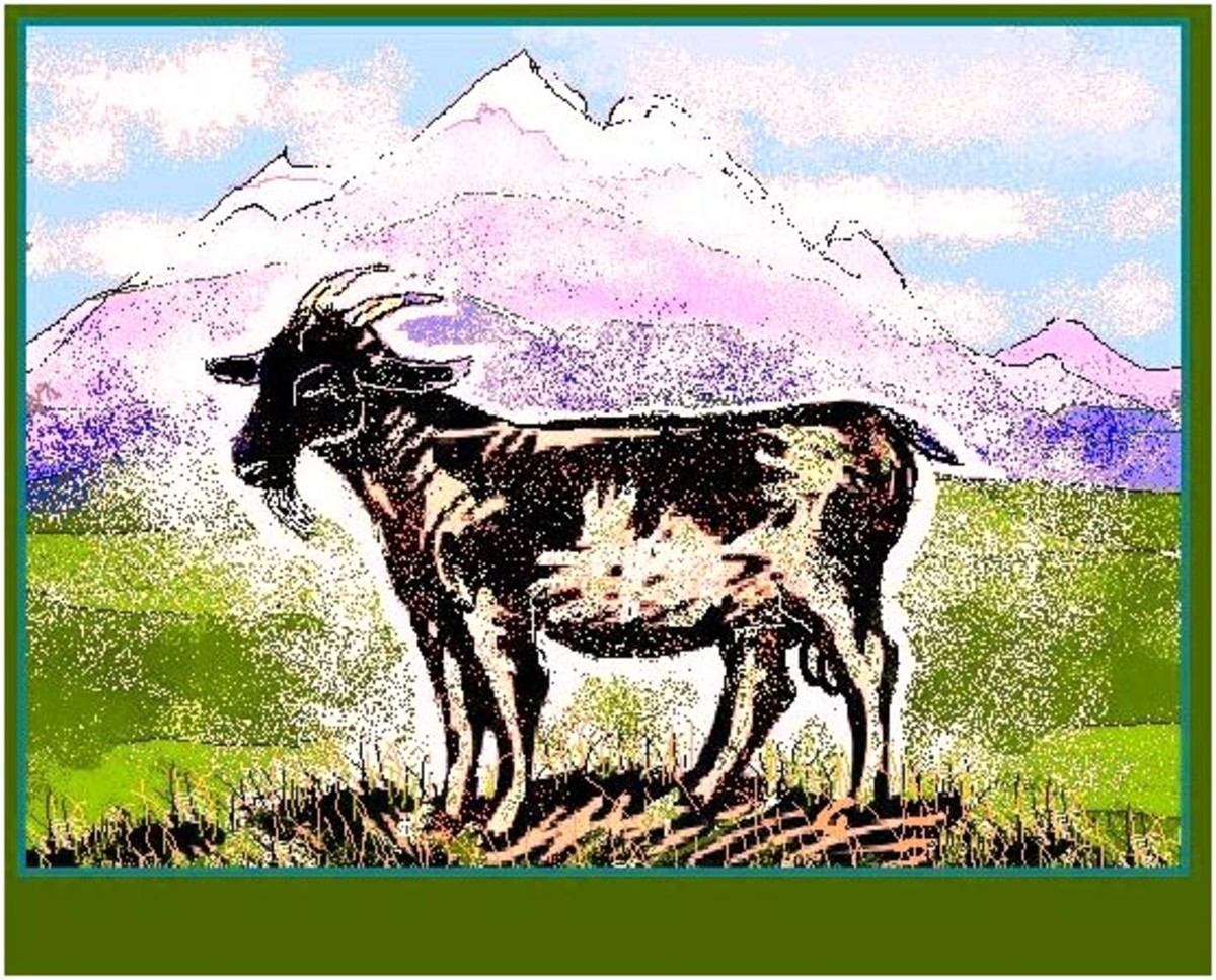 The goat was the 'Legal tender' of the Kikuyu