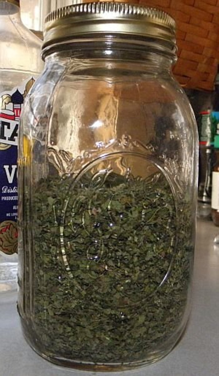 Add water to dried lemon balm to make an infusion.