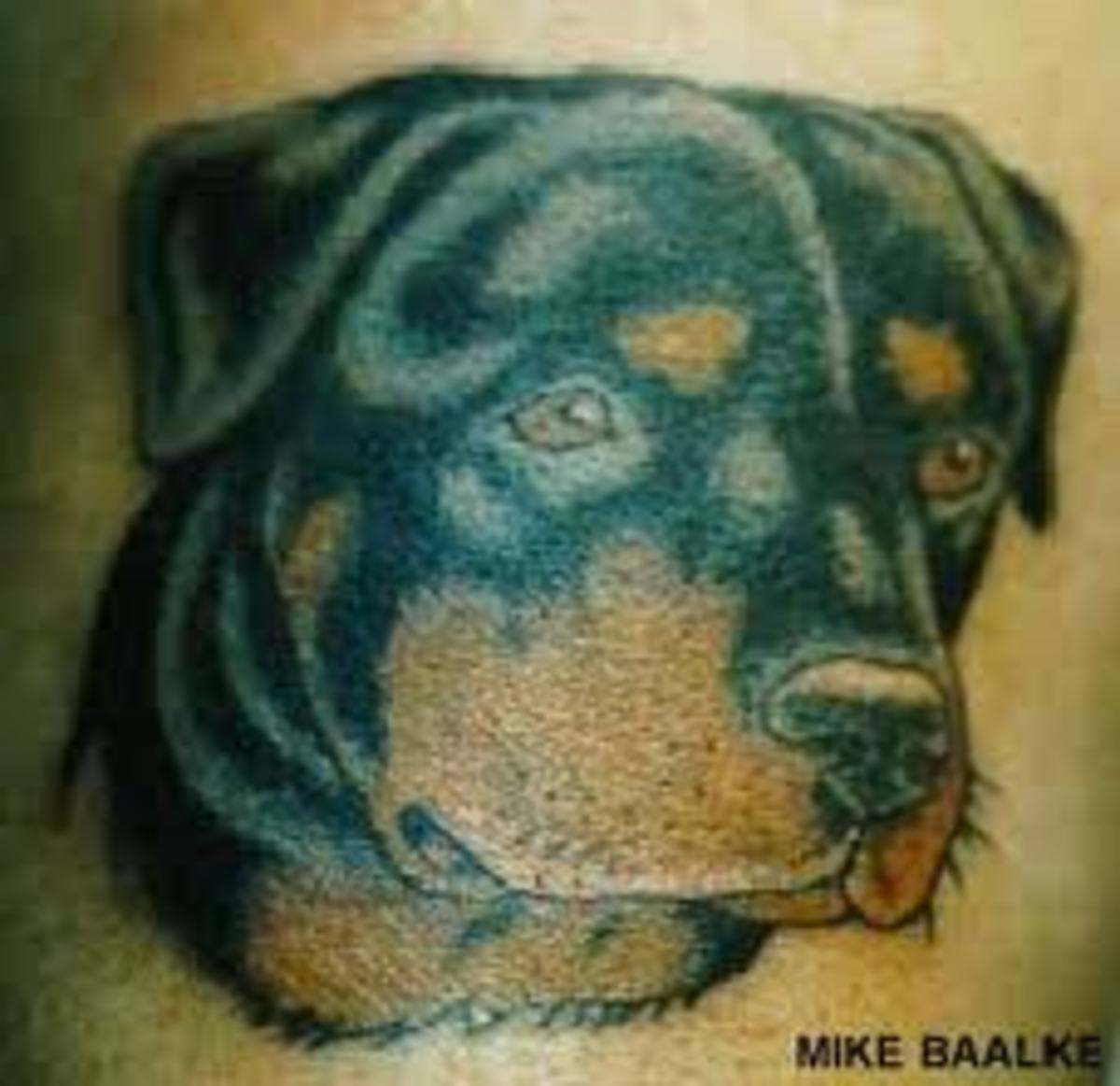 rottweiler-tattoos-and-meanings