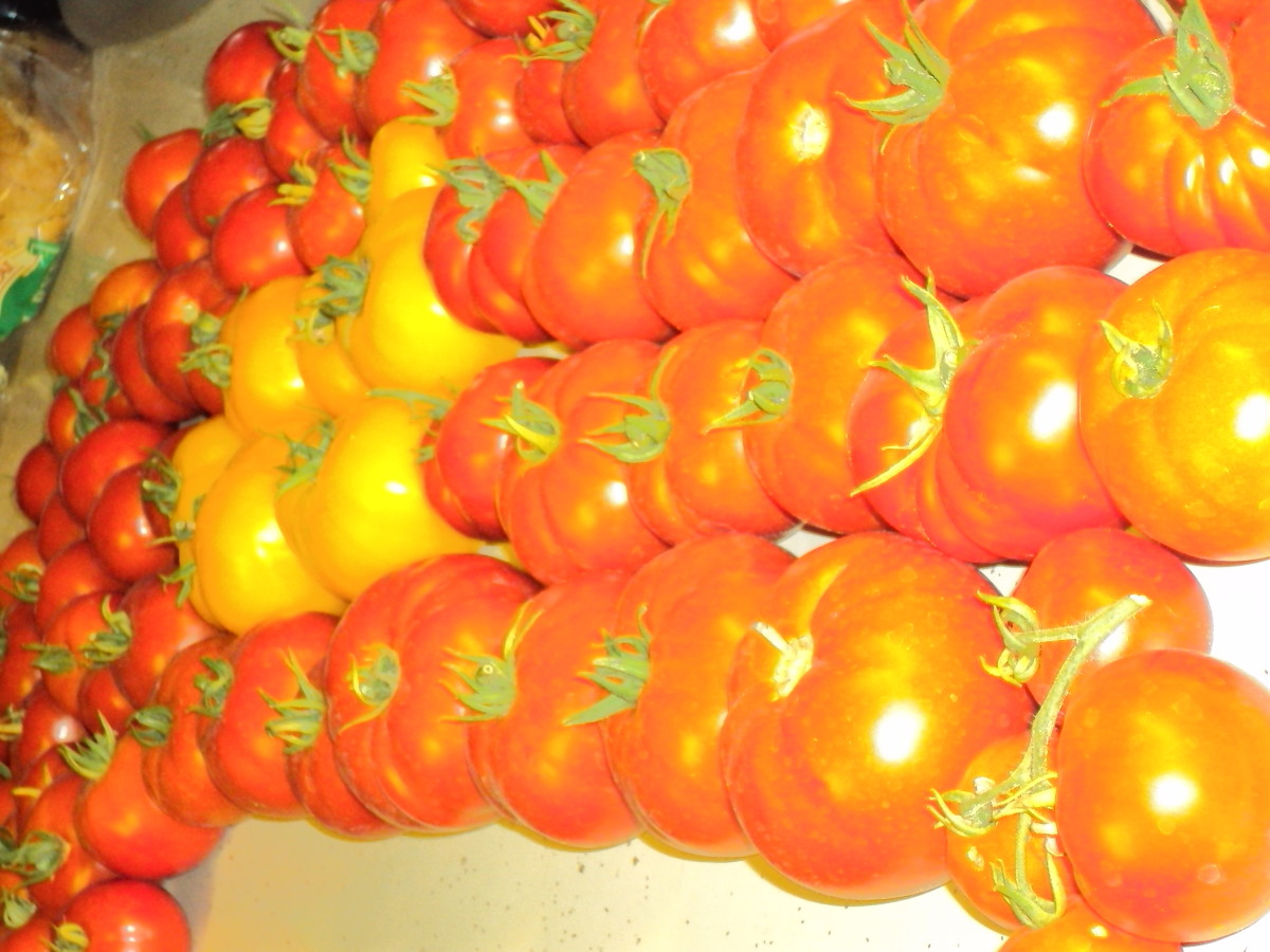 You can grow your own tomatoes and get so much more for your investment.