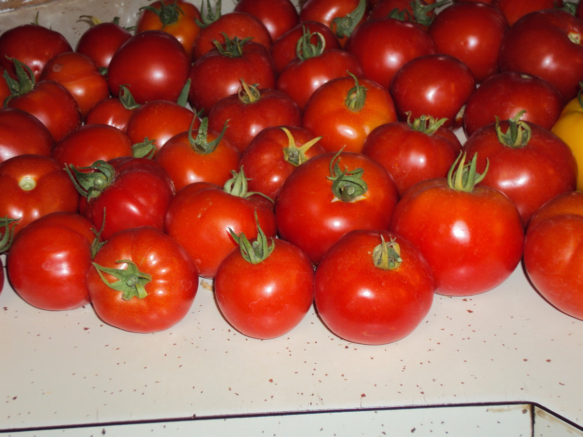 Red tomatoes always put me in a cheery mood.