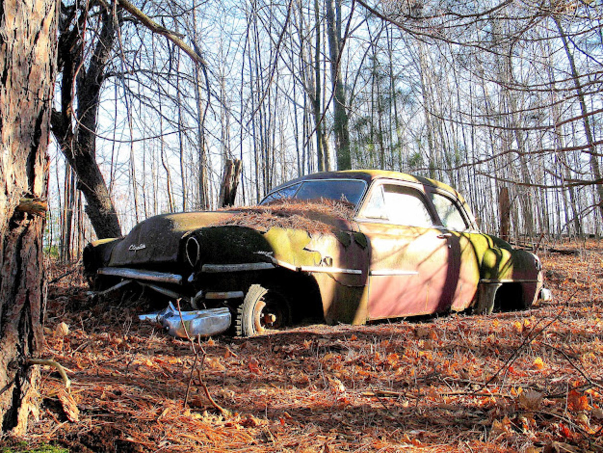 1951 Chrysler Windsor These colors caught and held my attention as I explored among the carcasses of junk cars. This old Chrysler is my favorite car in this open air museum of man's most beneficial and controversial invention.