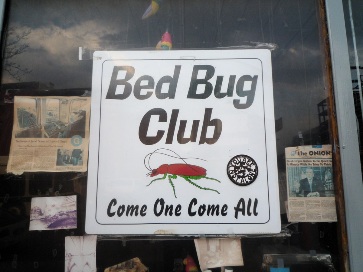 Bed bugs are now at historical highs in the United States and around the world.