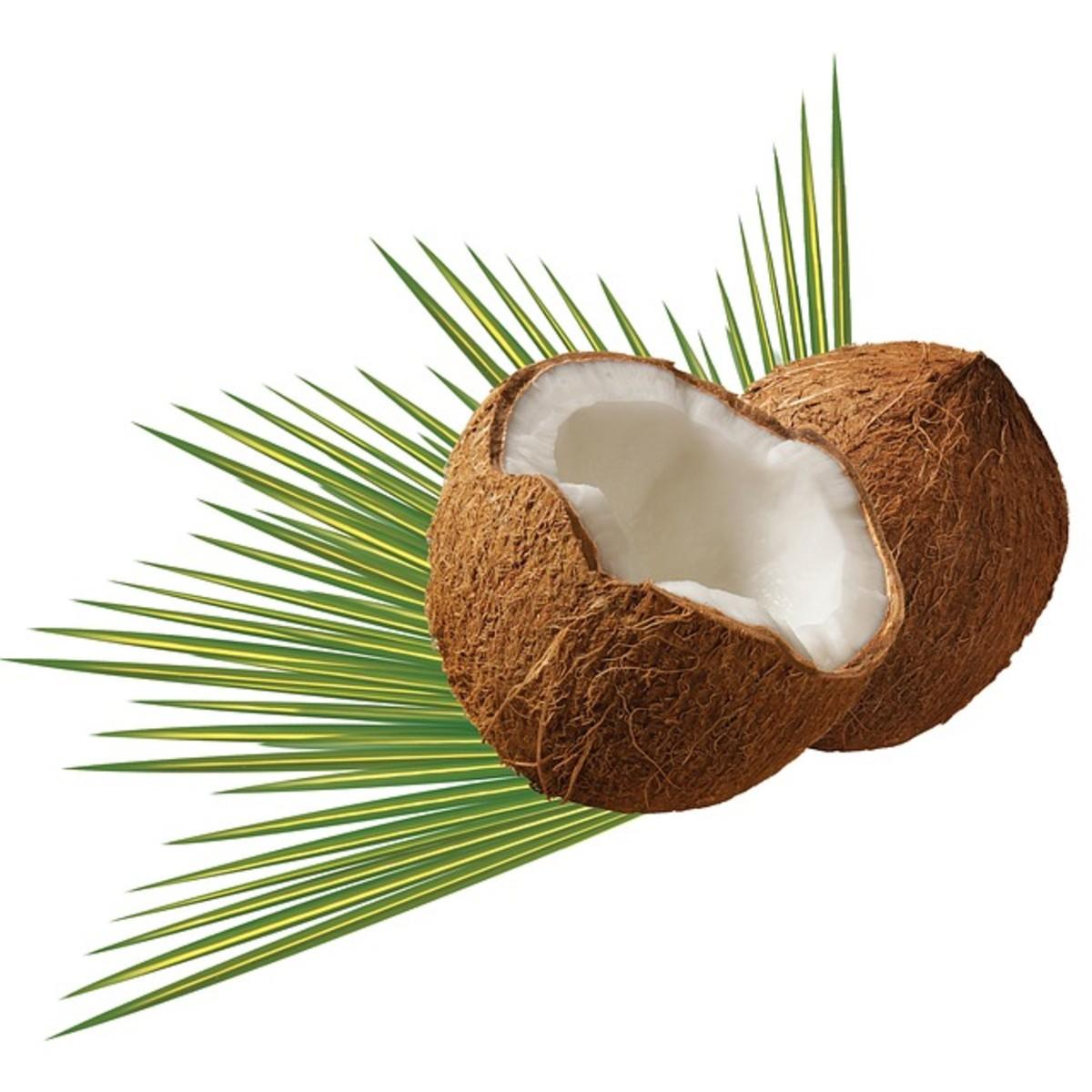 A Broken Coconut