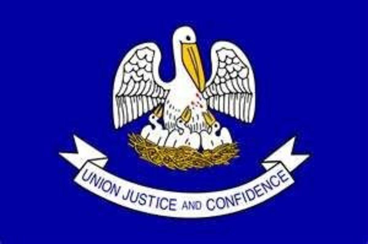 Louisiana's State Flag