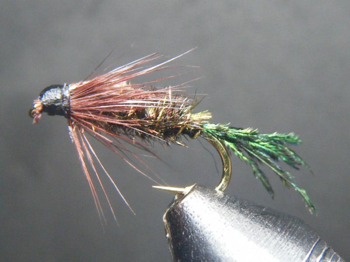 The traditional Zug bug is a favorite panfish nymph.