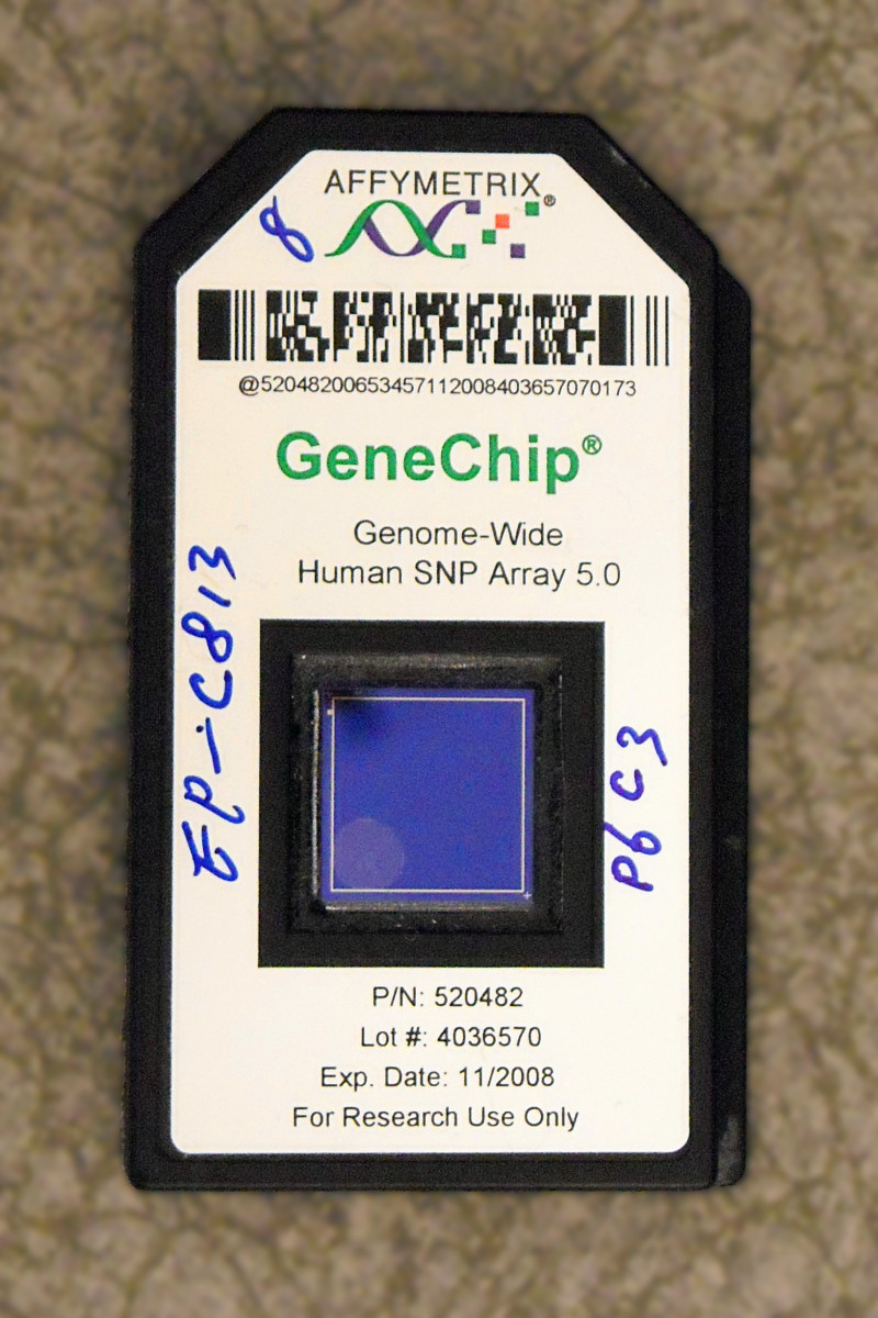 An Affymetrix Gene Chip - this microarray is used to examine multiple genetic sequences from the human genome. This type of chip may be used for genetic screening for a child with congenital birth defects.
