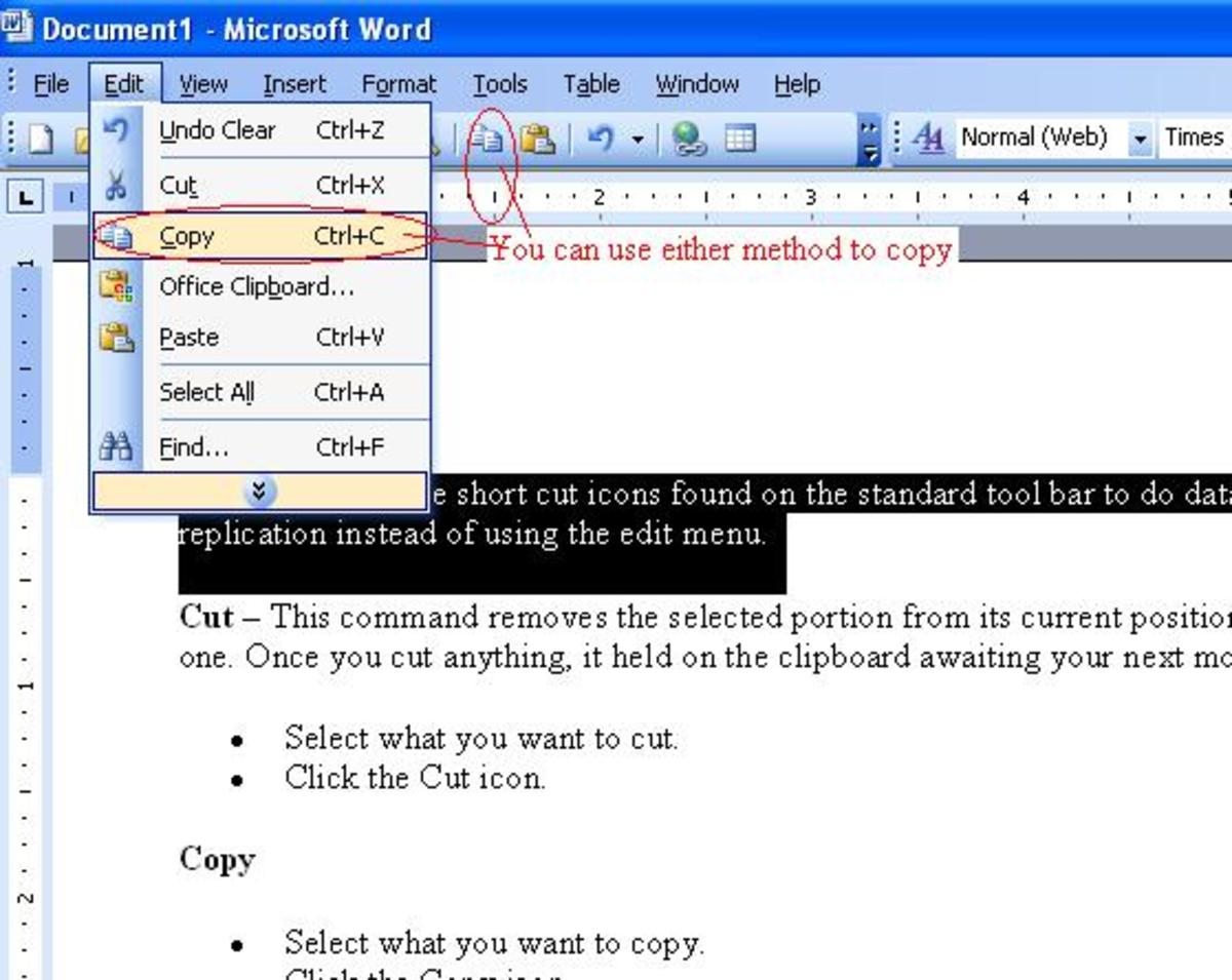 Introduction to Microsoft Word - Using the Cut, Copy, and Paste Tools