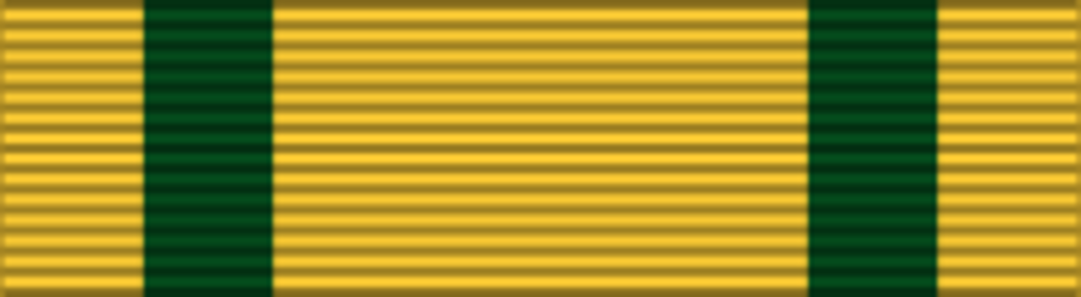 The Territorail War medal ribbon