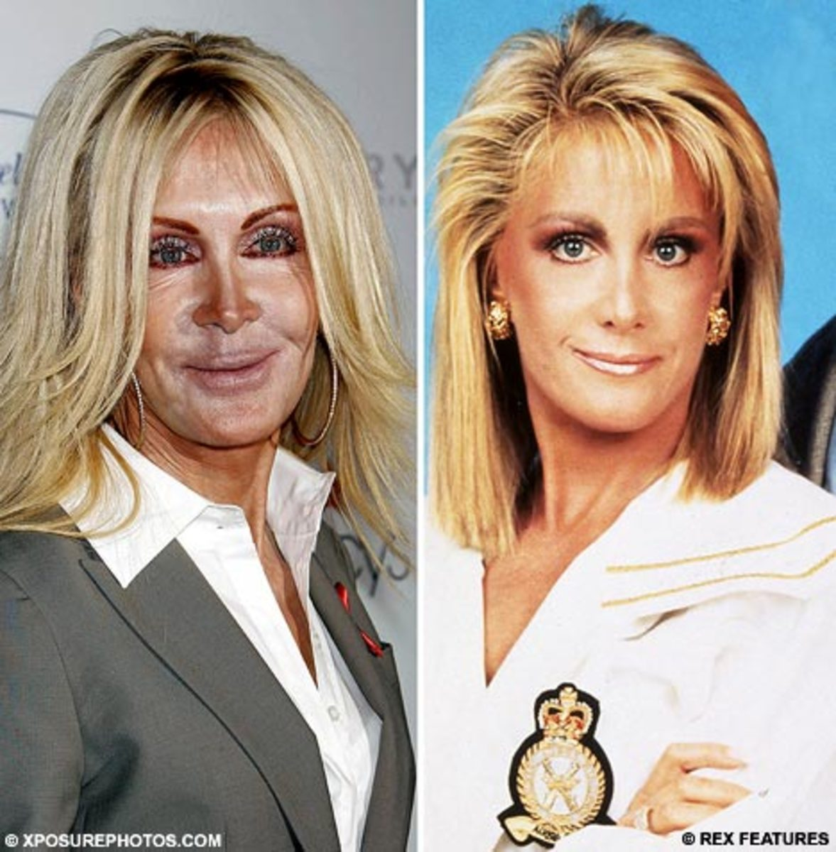 Joan Van Ark then and now.