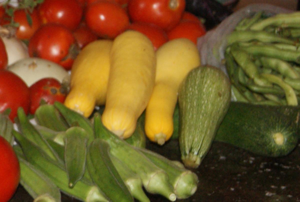 Summer Squash and Vegetable Assortment