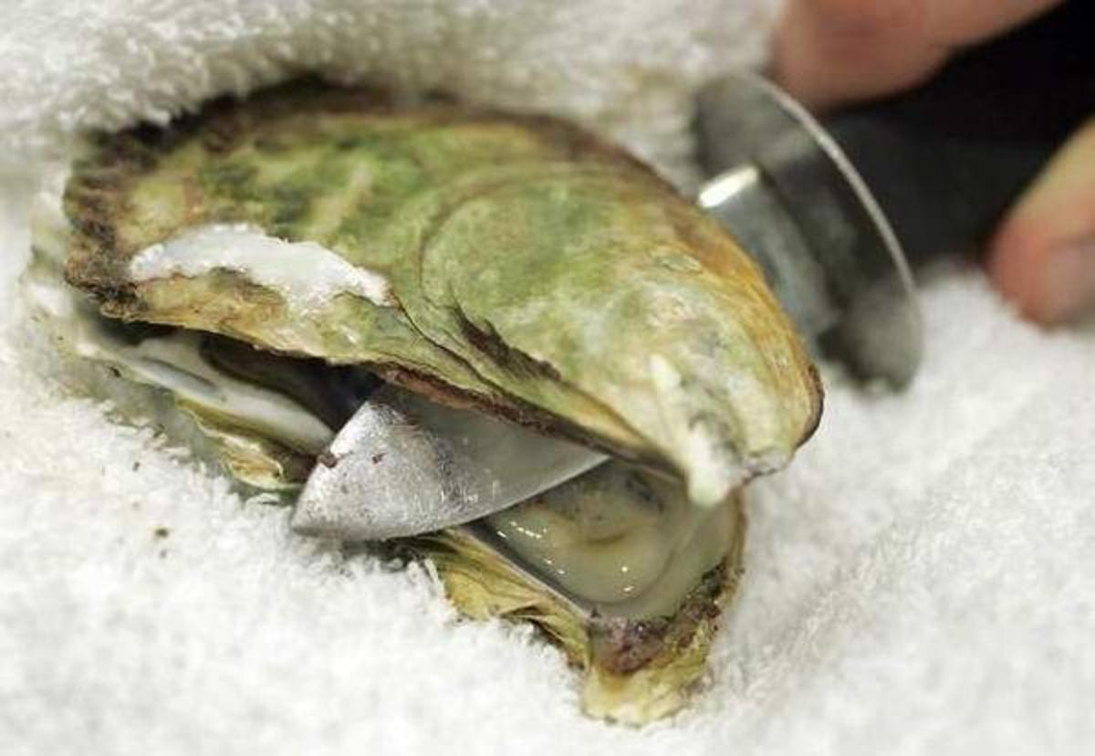 Shucking Oysters Doesn't Have To Be A Hard Job