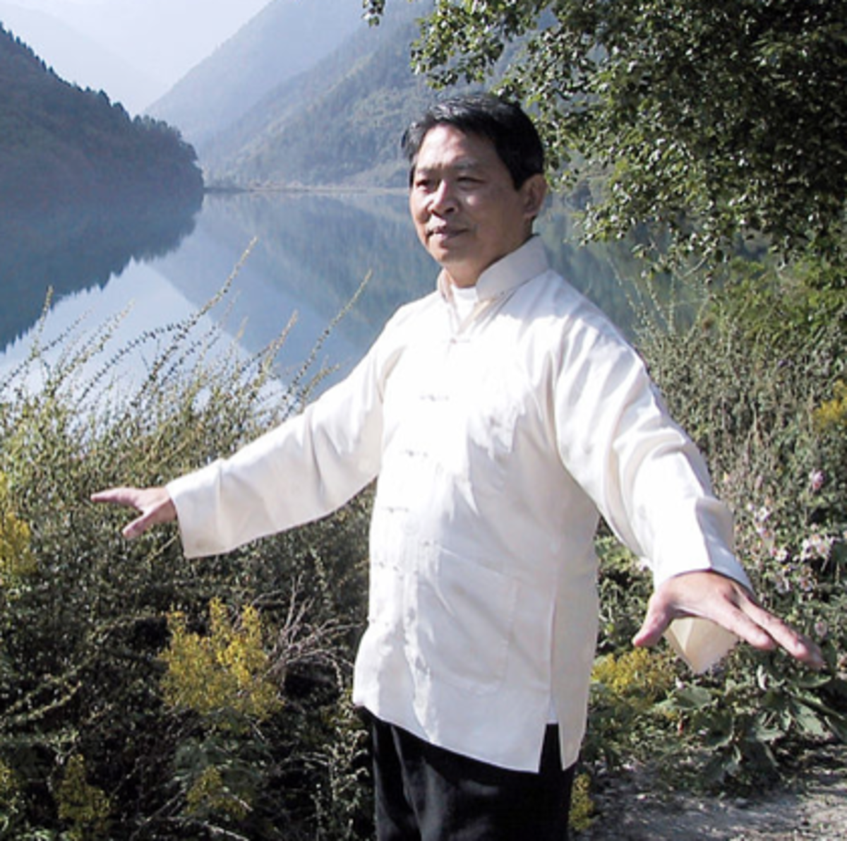 Master Lam Kam Chuen enthusiastically teaches standing qigong (zhan zhuang) and Ba Duan Jin and has published videos and books.