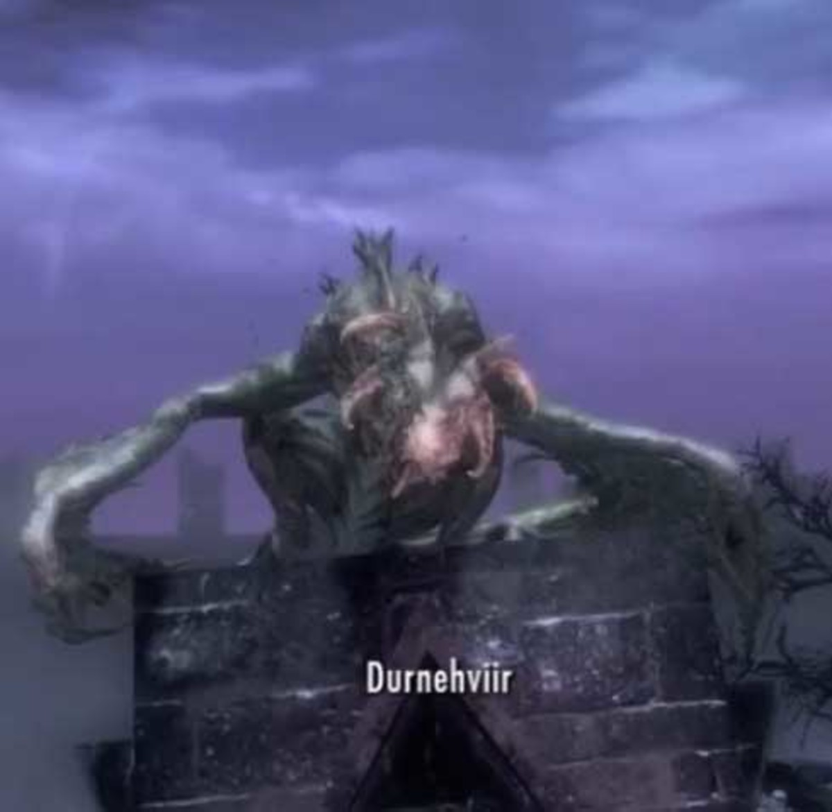 Skyrim learn the Dragon Shout from Durnehviir after defeating him.