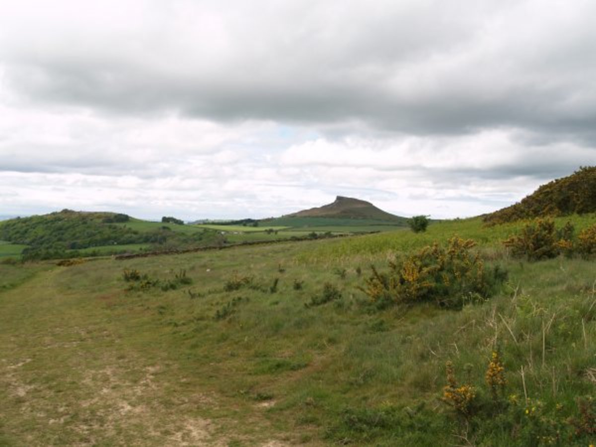 The base of Kildale Moor on the way to Easby Moor from the north, with Roseberry Topping as a 'route marker'
