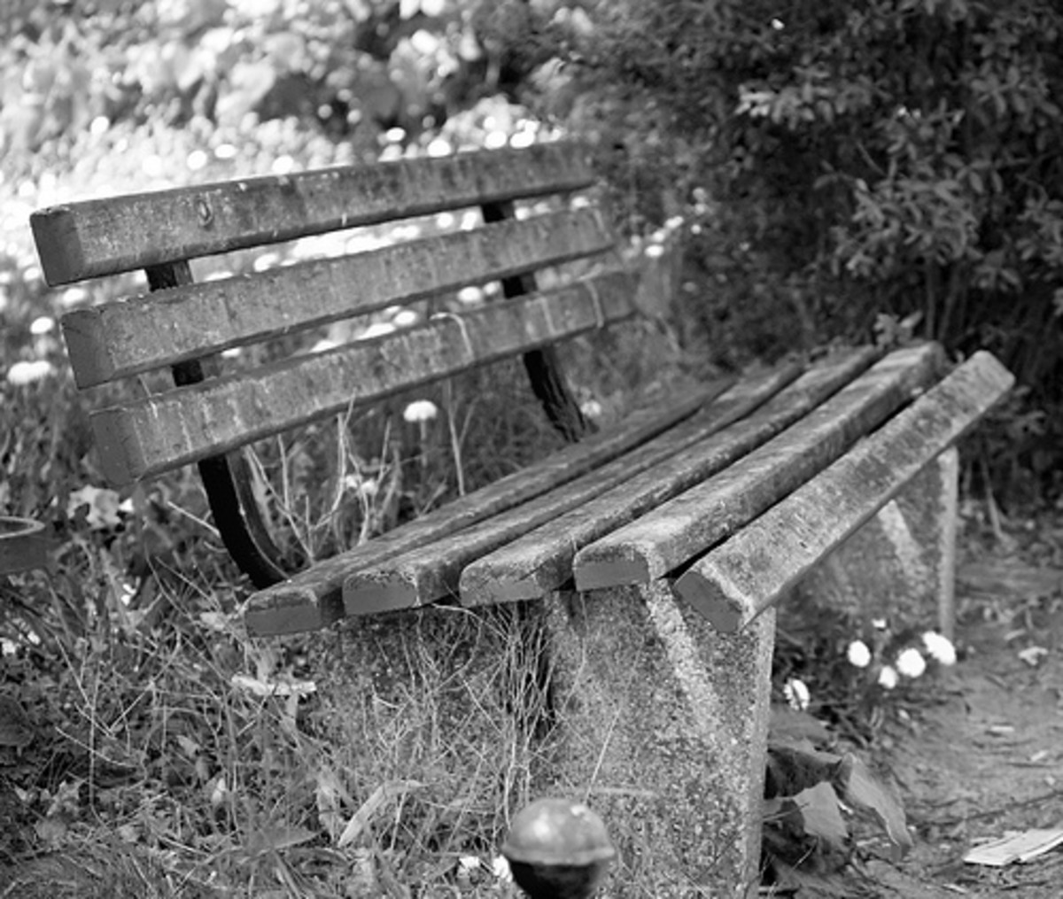 This black and white photo may produce uninteresting image if shot in color