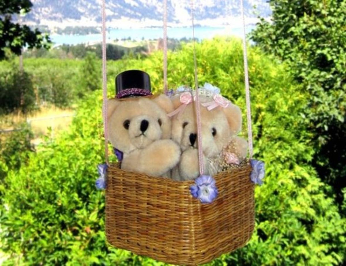 A Honeymoon Ride