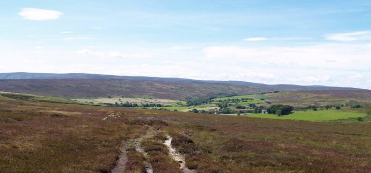 Looking down towards Commondale from the moor