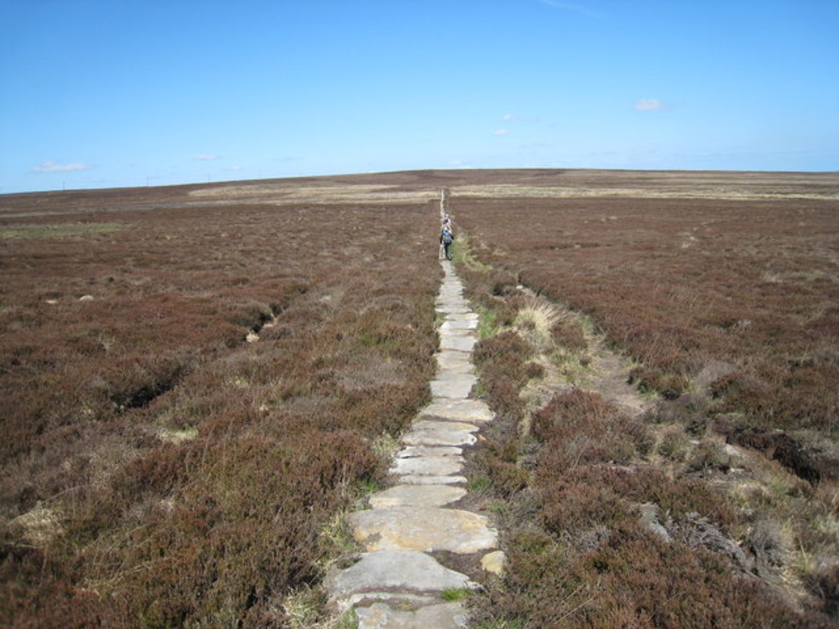 The Quakers' Causeway, a stone flagged route across the moor for pack horses and tinkers on foot - well worn over the centuries, in places better preserved