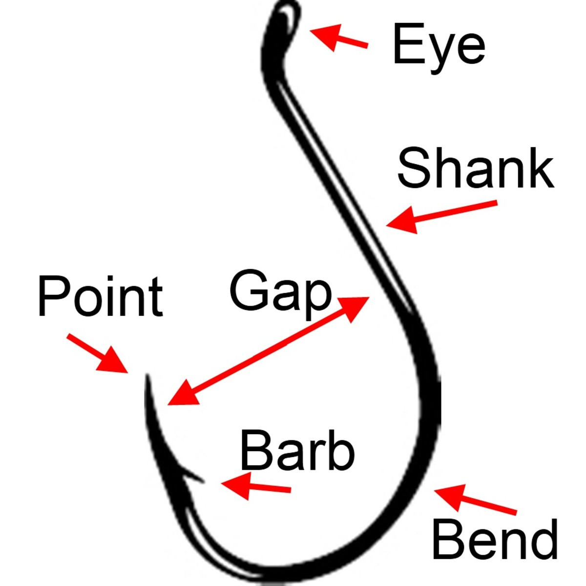 fishing-hook-selection-guide-which-fishing-hook-do-i-need