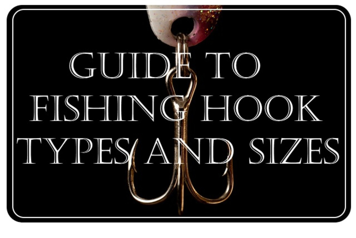 Complete Guide To Fishing Hook Types and Sizes