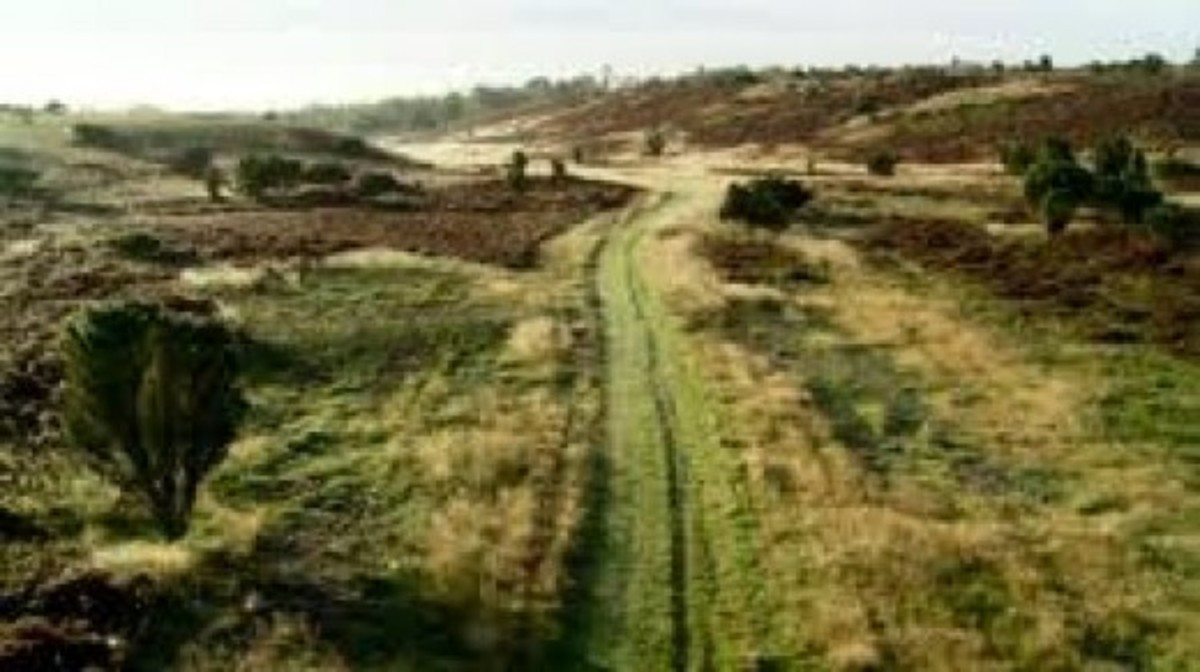 Traces can still be seen of the Haervey, the north-south military road that traversed Jylland to the Danevirke - assaulted in 1864 by an Austro-Prussian alliance